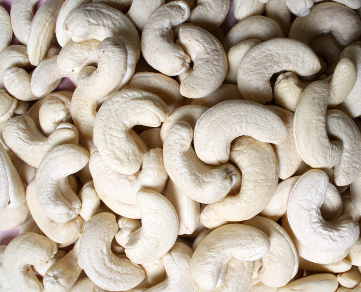 cashew-nuts-packing-tin-box-halal-organic